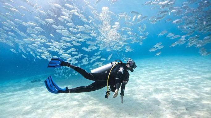 Underwater camera club